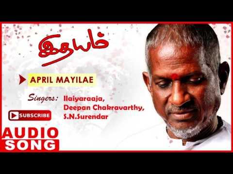 Idhayam Tamil Movie Songs | April Mayile Full Song | Murali | Heera | Ilayaraja | Music Master