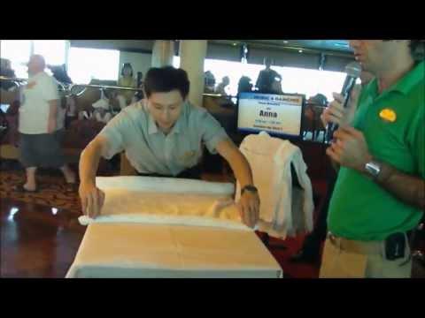 Animal Towel Folding (Part 1)