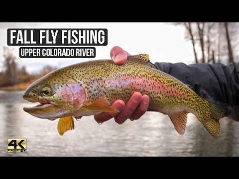 The Days Are Cold, But The Fishing Is HOT ... A Day Well Spent Fly Fishing The Upper Colorado River