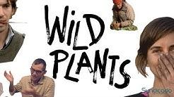 Wild Plants - Trailer