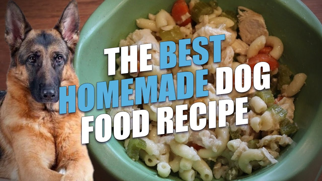 The best homemade dog food recipe healthy and cheap youtube the best homemade dog food recipe healthy and cheap forumfinder Choice Image