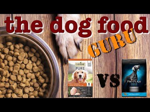 Canidae Vs Pro Plan Dog Food Mashup