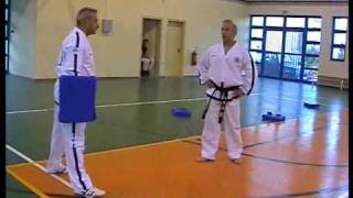 Taekwon-do ITF Reverse Turning Kick by Master V. Alexandris