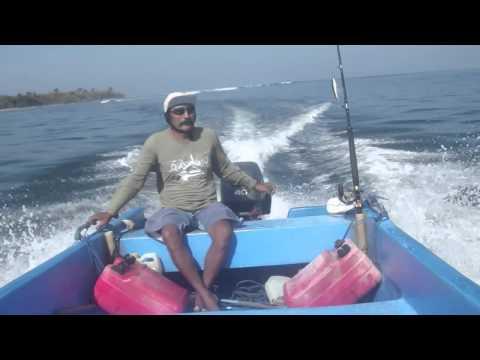 Mengantar 'Jason Statham' Surfing di G-Land Plengkung Alas Purwo Banyuwangi