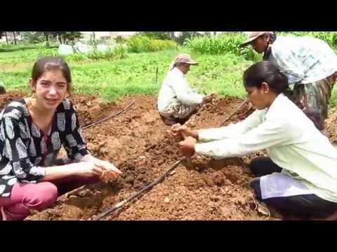 Experience Organic Farming in India