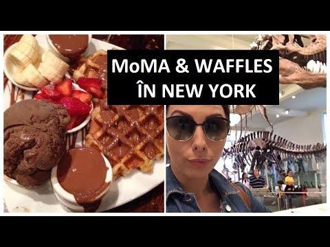 CEA MAI BUNĂ  CIOCOLATERIE DIN NEW YORK! | MoMA - MET - HISTORY MUSEUM