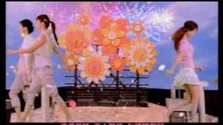7 Flowers-Pai Jin Nu Hai