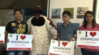 World Sparrow Day:  I LOVE SPARROWS
