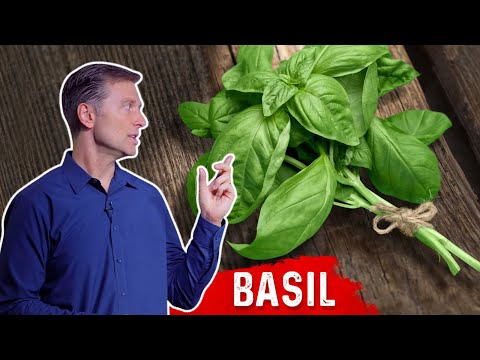 Nutritional Benefits of the Herb Basil