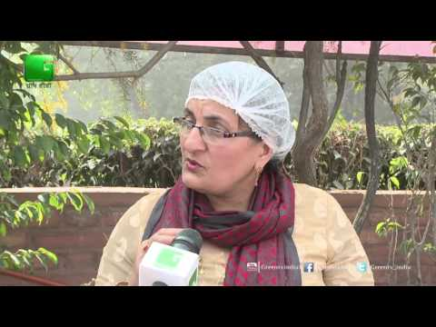 Event to promote Organic Food in Business Of Agriculture On Green TV