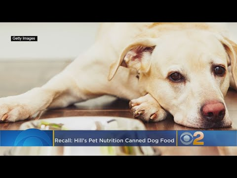 Hill's Pet Nutrition Issues Recall On Canned Dog Food