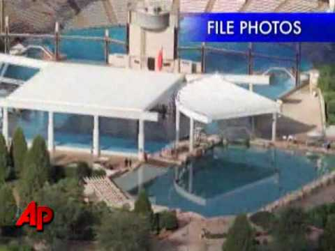 Worker Dies At SeaWorld Orlando