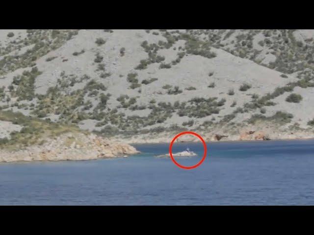 5 Người Cá Vô Tình Được Camera Quay Lại Ngoài Đời Thật - Muôn Màu Cuộc Sống