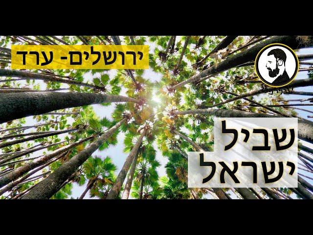 שביל ישראל -אזור ירושלים והכניסה למדבר