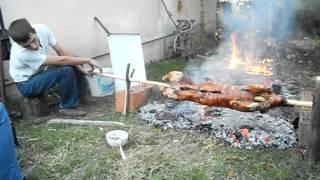 видео отдых в Сербии
