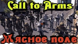 Call to Arms - МЯСНОЕ поле