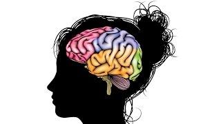 5.3 Нервная система - Головной мозг (8 класс) - биология, подготовка к ЕГЭ и ОГЭ 2017
