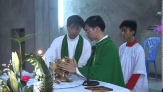 Lễ đón Cha Phero Vũ Văn Thìn 3