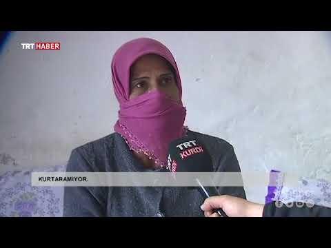 Afrin'den YPG/PKK zulmünden kaçan köylüler yaşadıklarını anlattı