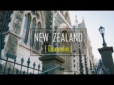 Dunedin, The historical city | New Zealand | in 3 mins