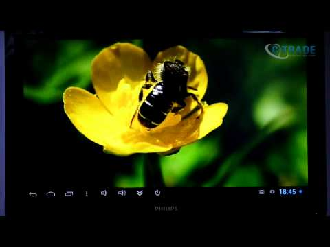 Обзор minix neo z производительный android mini pc