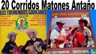 Los Dos Rancheros vs Los tremendos Gavilanes Corridos antaño mix