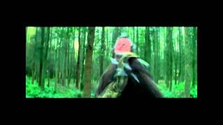 Eluveitie-Sempiternal Embers (with lyrics)