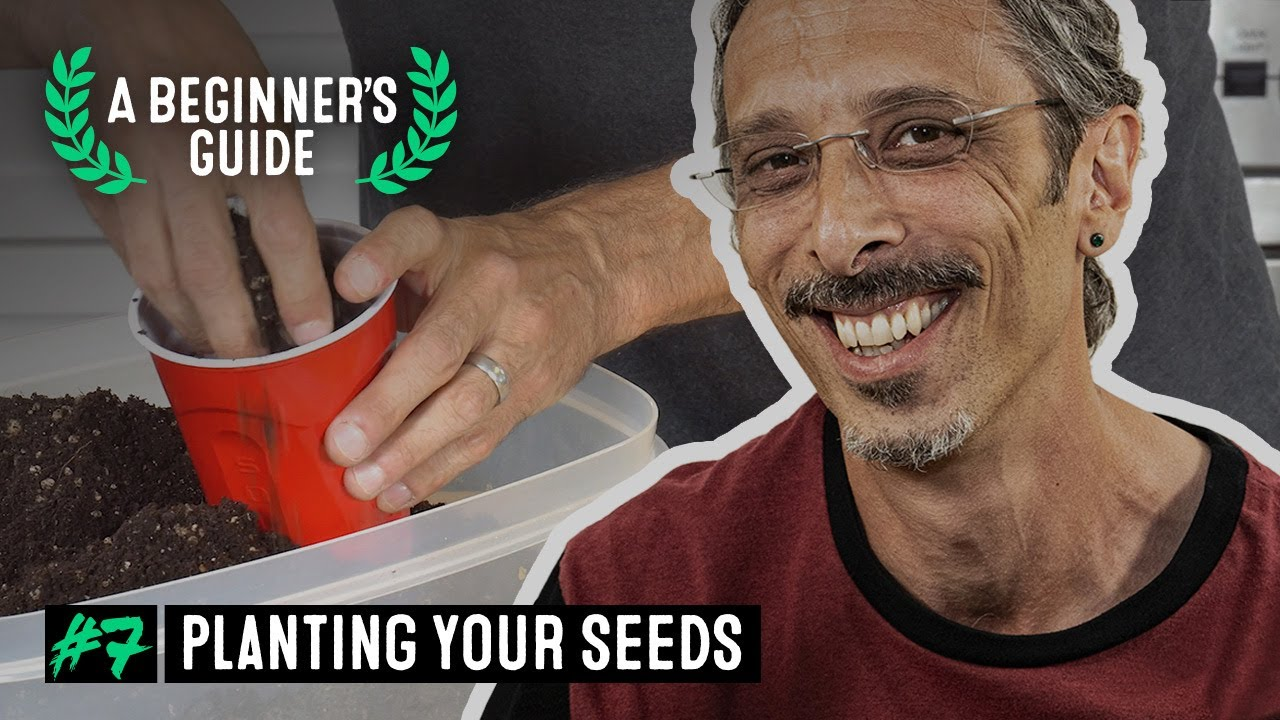 A Beginner's Guide with Kyle Kushman. Ep 7: Planting your seeds
