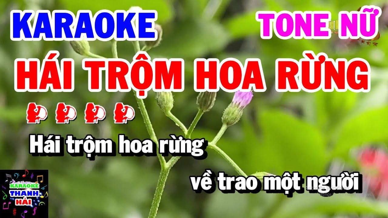 Karaoke Hái Trộm Hoa Rừng   Nhạc Sống Tone Nữ Bm Beat Hay Dễ hát   Thanh Hải