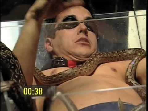 FEAR FACTOR - Argentina(2006)
