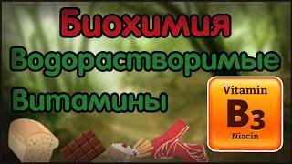 Биохимия. Лекция 15. Водорастворимые витамины. Витамин B3 (PP, ниацин)