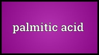 Palmitic acid Meaning