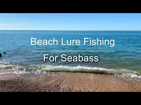 Beach Lure Fishing For Seabass UK (Catch & Cook)