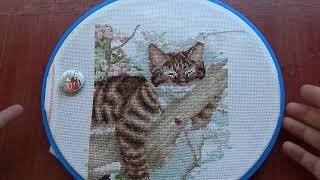 Вышивка крестиком/Вышивальная неделя/Тэя,дремлющий кот и зелёный попугай😜