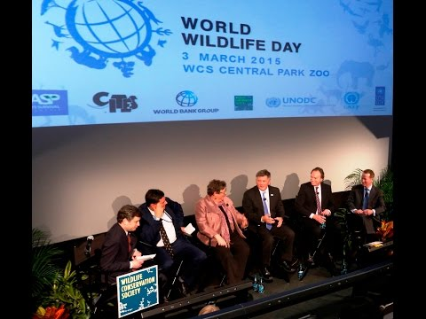 High-level Stakeholder Dialogue on Illegal Wildlife Trade to mark World Wildlife Day