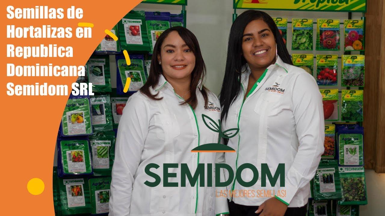 Semillas de Hortalizas en Republica Dominicana | Semidom SRL