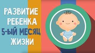 видео Развитие ребенка в 5 месяцев