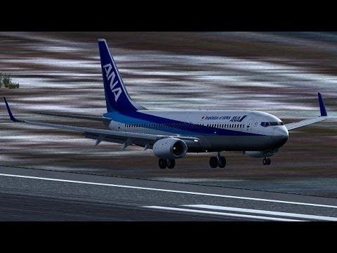 TDS 737-800 Review Fs2004 | FunnyDog TV
