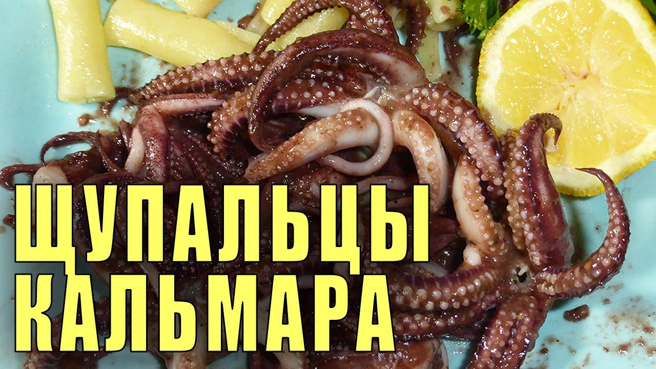 щупальца кальмаров рецепт-хв7