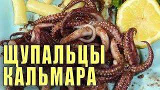 Щупальцы Кальмара Жаренные Рецепт (Squid Tentacles Fried)(Друзья - по Вашему заказу выкладываю свой рецепт приготовления кальмаров. Что про него сказать - очень быстр..., 2015-12-05T13:32:18.000Z)