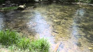 видео река Бельбек