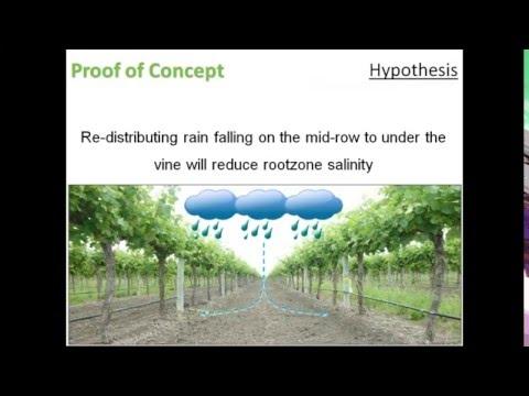 Redirecting rain to manage soil salinity (AWRI webinar recording)