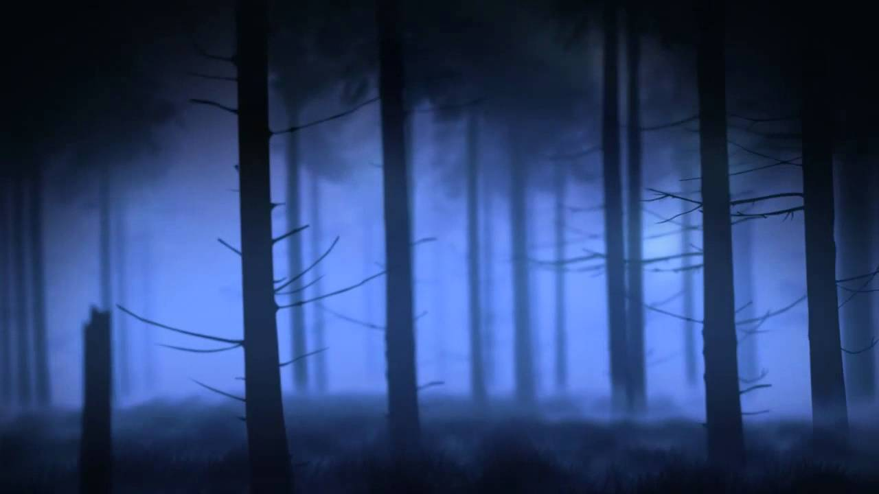 Once Upon A Time Forest Background - YouTube