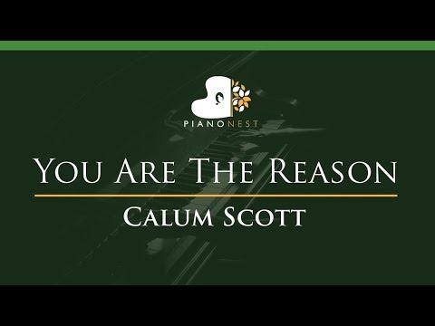 Calum Scott - You Are The Reason - LOWER Key (Piano Karaoke / Sing Along)