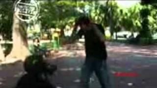 Download Video E:\Naruto\Mientes .- Camilla (NMA_uchiha).3gp MP3 3GP MP4