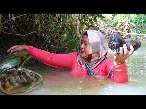 Sungai Ini Jarang Terjamah Manusia,Banyak Kerang Berukuran Monster
