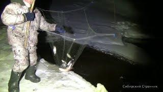 Рыбалка на пауки и круги ночью. Фонарь MT18 от магазина LEDLENSER