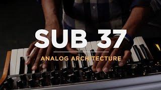 Sub 37 | Analog Architecture thumbnail
