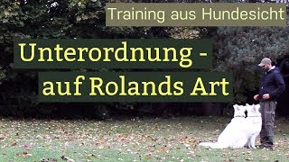 Hundetraining Unterordnung - Training mit zwei Hunden