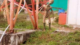 Rara Criatura grabada en video 2017
